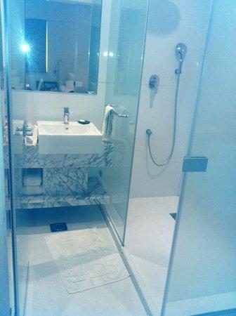 Clarion Chennai: Bathroom
