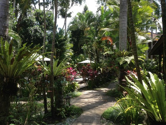 Taman Rahasia Tropical Sanctuary & Spa : the lush surroundings