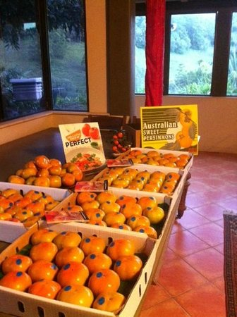 Rossmount Rural Retreat: Persimmon Season