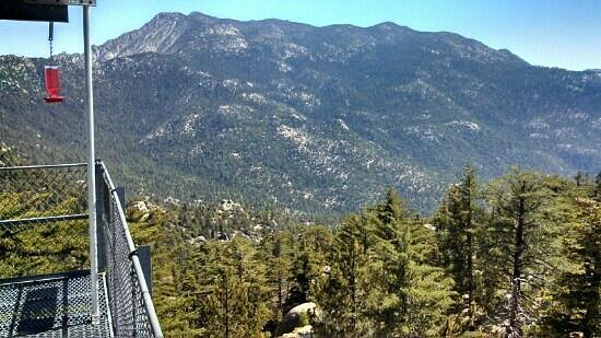 Mount San Jacinto State Park and Wilderness: Mt.  San Jacinto from the Black Mountain Fire Tower. You can actually climb up into the tower!