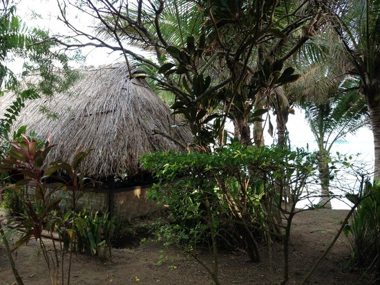 Beach Cocomo: The little hut(restaurant) a beautiful place for meals