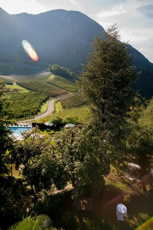 Relais & Chateaux Castel Fragsburg: Zimmeraussicht