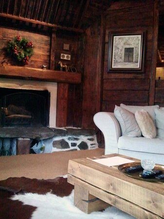Chez Bear Ski Lodge: Lounge