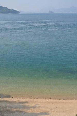 灯台手前から見下ろせる絶景 - Picture of Okunoshima Island, Takehara - TripAdvisor