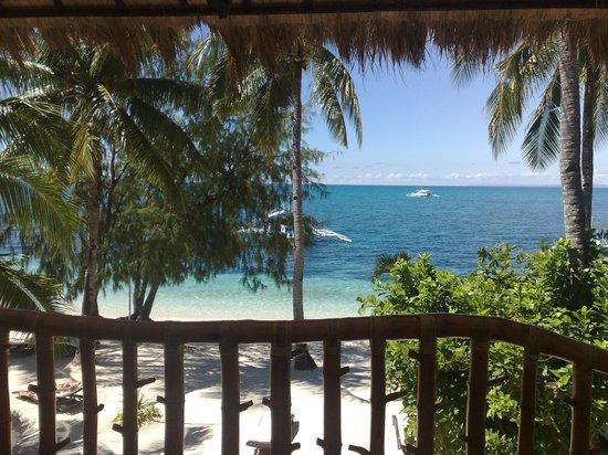 Ocean Vida Beach & Dive Resort : vista dal terrazzo