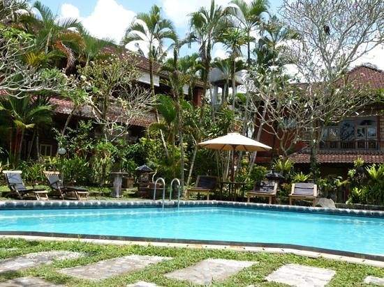 Okawati Hotel: the pool/garden