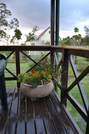 Forest Edge Nature-lovers' Retreat: Herb garden on the patio