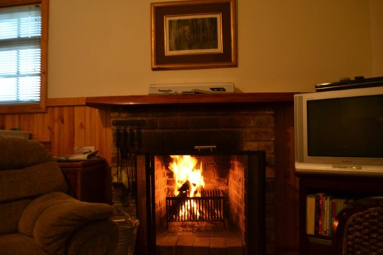 Forest Edge Nature-lovers' Retreat : Really enjoyed the fireplace