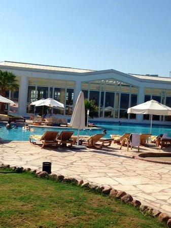 Hilton Sharm Waterfalls Resort: chillax pool