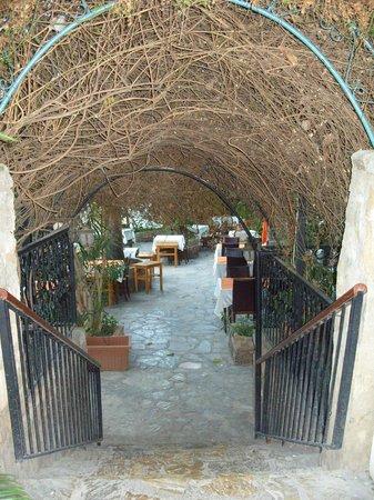 The Secret Garden : Down into the restaurant