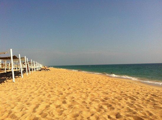 Paixa: ANCAO BEACH