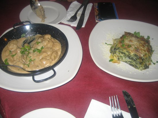 Café Infinito: Mushroom curry and veg lasagne