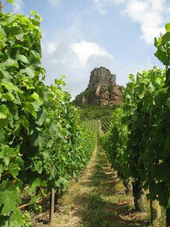 Rock of Solutré: View of the Roche-de-la-Solutré from the vineyard
