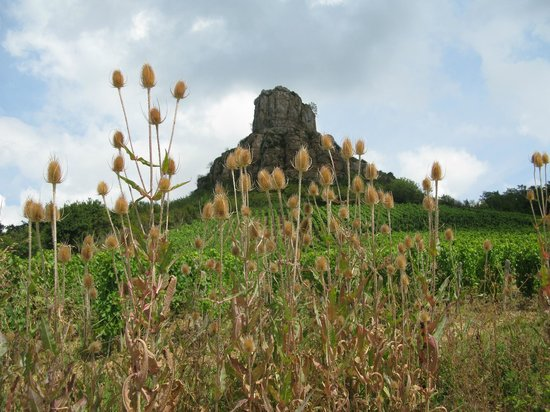 Rock of Solutré: View of the cliff