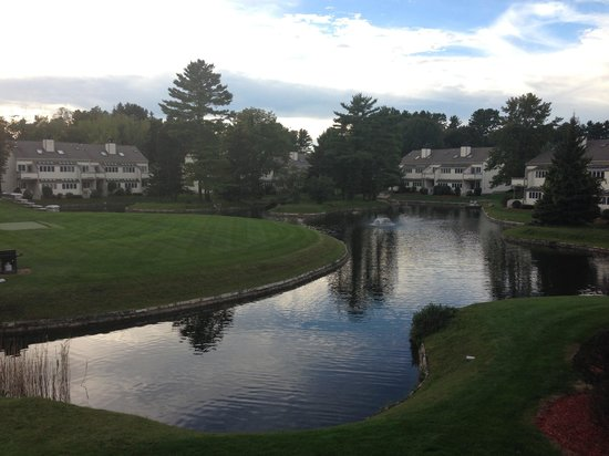 The Ponds at Foxhollow: The pond!