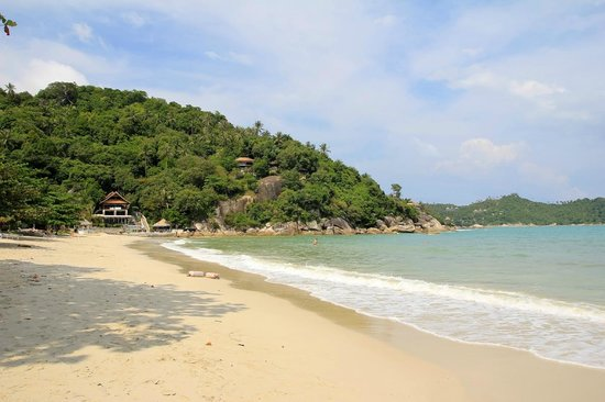 Koh Phangan Dreamland Resort : The beach