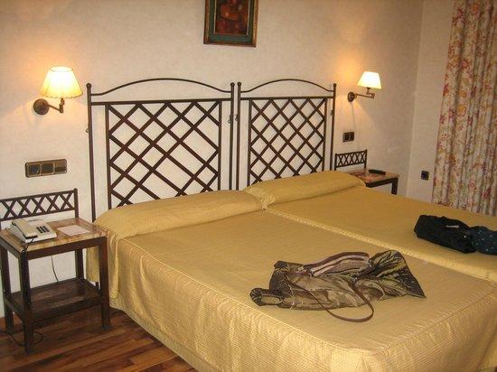 Hotel Palacio de Valderrabanos: Habitación
