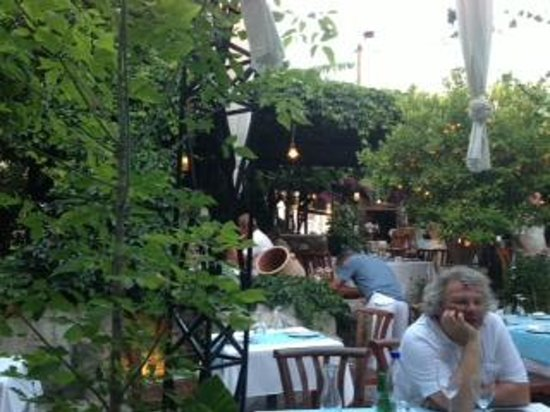 Petrino: Al fresco dining, lovely lighting, running water, great service!