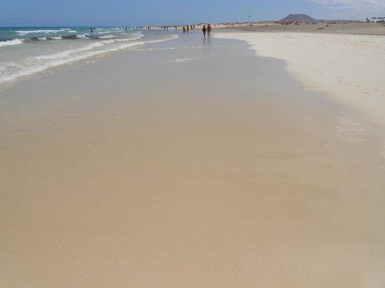 Hotel Atlantis Dunapark: SPiaggia davanti le dune