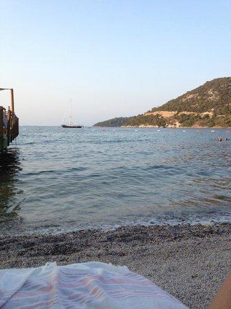 Babana Hotel: photo