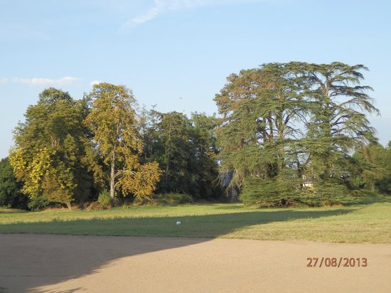 Chateau de la Jumelliere : Park