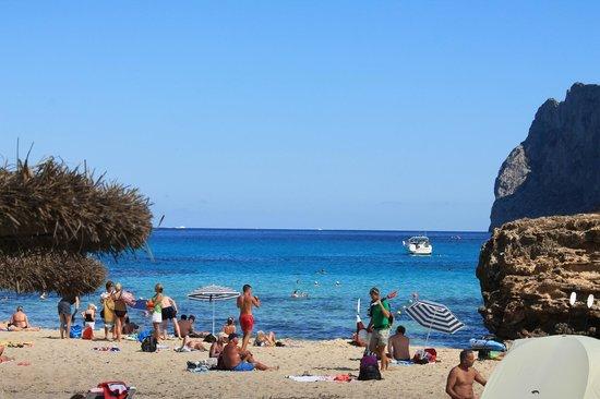 Hostal Los Pinos: The beach nearest hotel