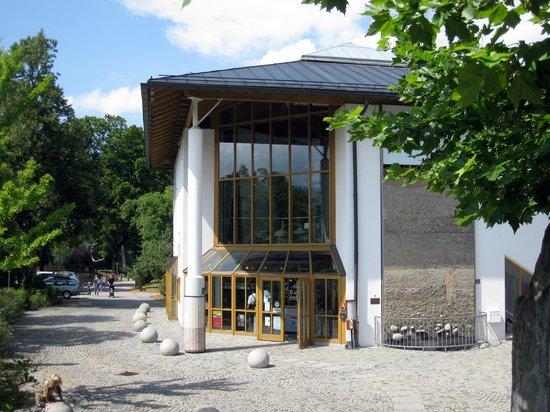 Südostbayerisches Naturkunde- und Mammut-Museum Siegsdorf