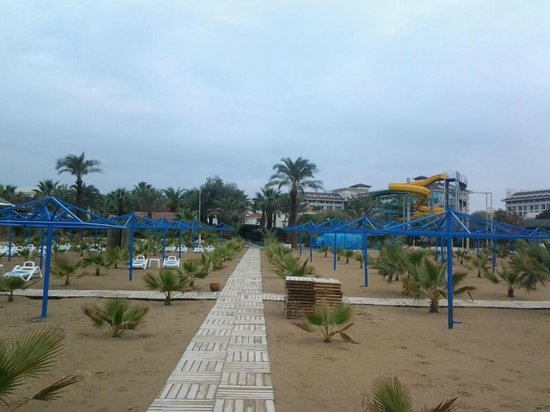 Paloma Oceana Resort: beach
