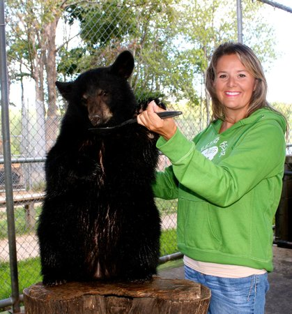 Oswald's Bear Ranch : Made my week!