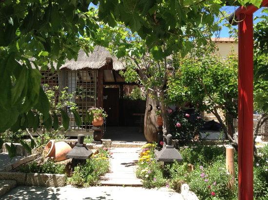 Casas Alberto: JAIMA