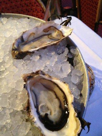 La Rotonde : Delicious oysters