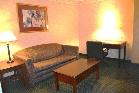 Comfort Inn & Suites Peachtree Corners: Suite Room living area