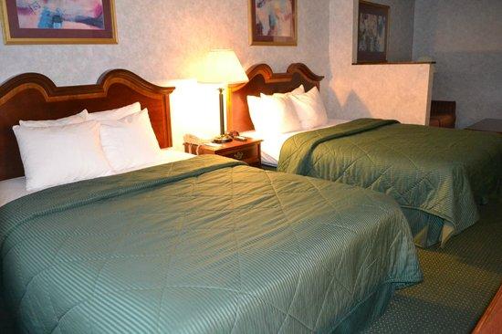 Comfort Inn & Suites Peachtree Corners: Non- Smoking 2 Queen size bed