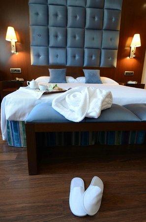 Hotel Mirador de Gredos: Habitación
