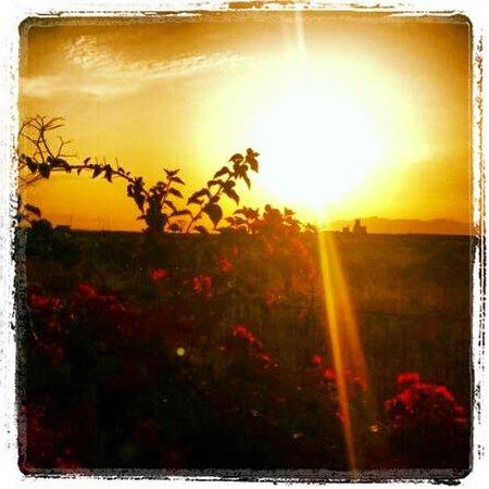 Residence Baglio del Sole : Il baglio del sole