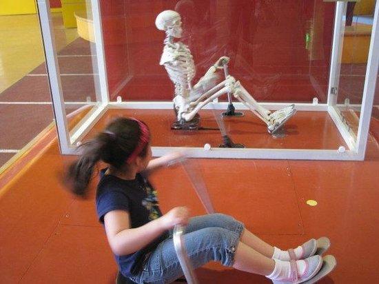 Children's Museum: motion model