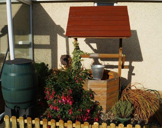 Rosevale Bed and Breakfast: in back garden