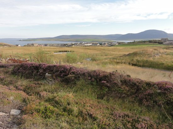Brinkies Guest House : The walk from Brinkie's Brae to Stromness