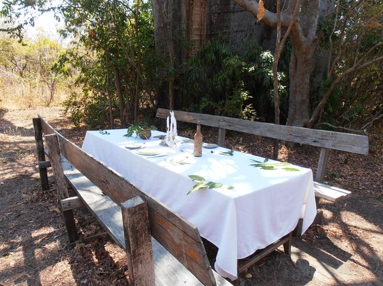 Nkwichi Lodge: Lunch under the Baobab