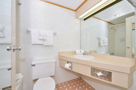 Lamplighter Inn & Suites North : Guest Bathroom