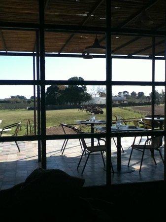Restaurante CampoTinto: Vista desde el interior del restaurant
