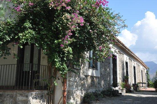 Agriturismo Fondo Cipollate: Het huis