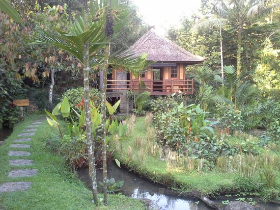 Bali Eco Stay Bungalows: Springwater