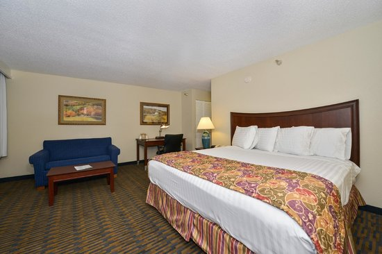 Lamplighter Inn & Suites South : Guest Room