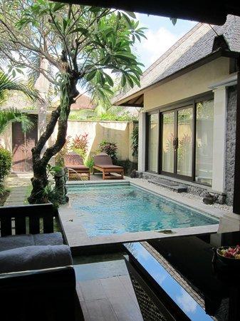 The Sanyas Suite Seminyak: 私人泳池-完全沒有氯味!