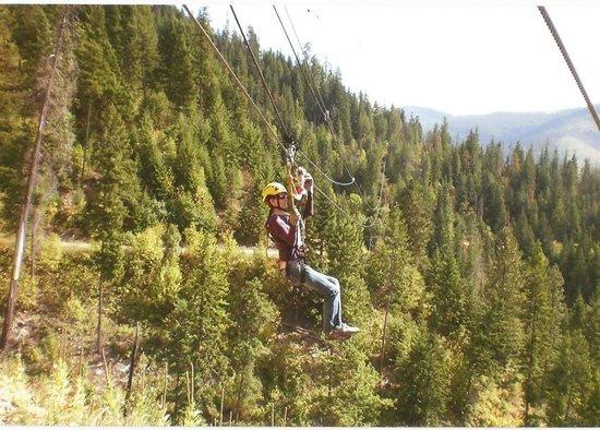 Silver Streak Zipline Tours: High a top the Trees