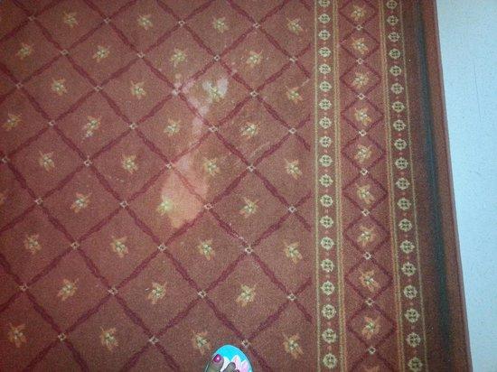 Palladio Hotel: Hallway