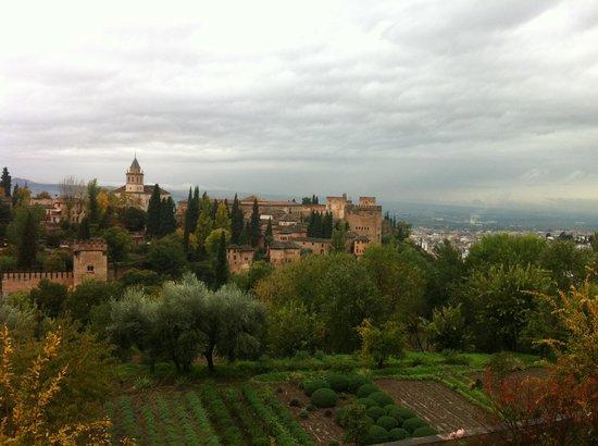 NH Collection Granada Victoria: View