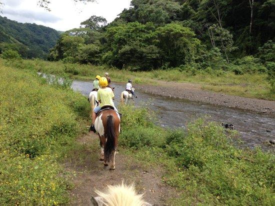 Ocean Ranch Park: River crossing on horseback