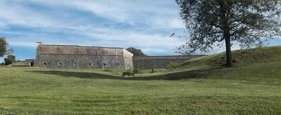 Fort Washington Park: Photo of fort with my back to the Potomac.  Notice the deer.